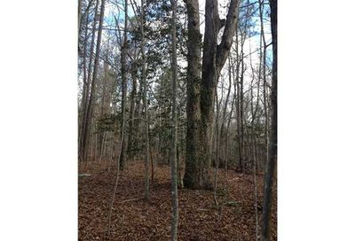 lot 3 Deer Mountain Road Pittsboro NC 27312
