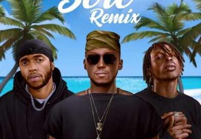 DJ Spinall Ft. 6lack & Fireboy DML – Sere (Remix)