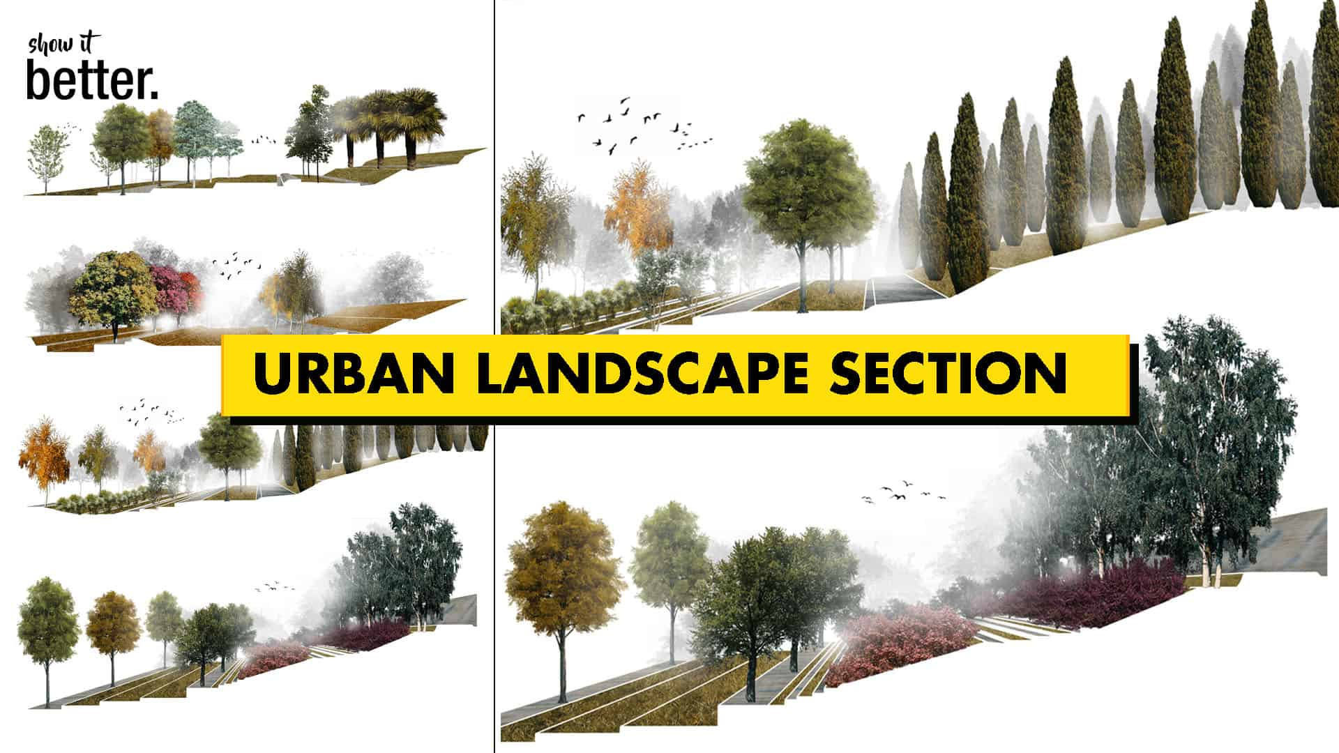 Urban Landscape Section