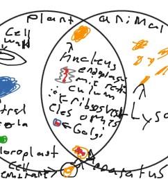 most viewed thumbnail venn diagram [ 1024 x 768 Pixel ]
