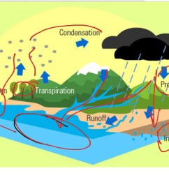 diagram for the water cycle [ 1024 x 768 Pixel ]