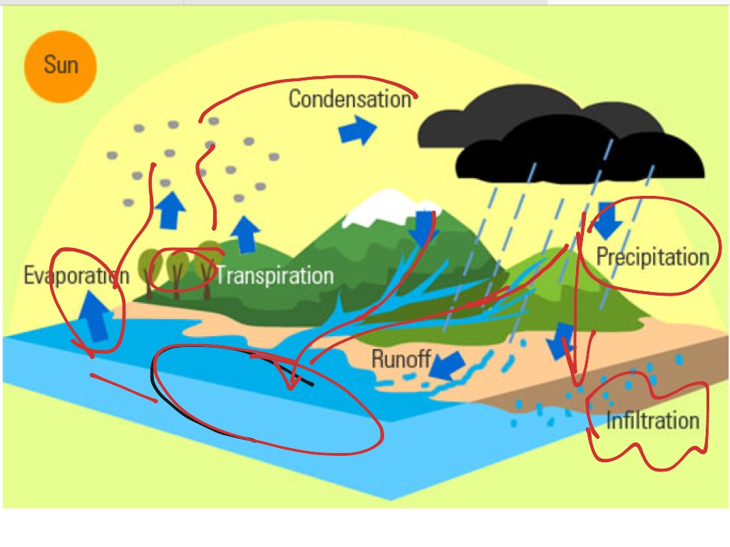 hight resolution of diagram for the water cycle