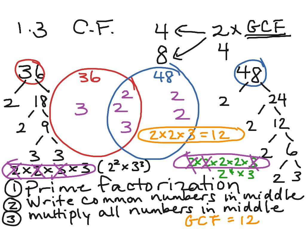 hinduism buddhism venn diagram fender s1 switch wiring 1 3 lesson on and gcf math greatest common