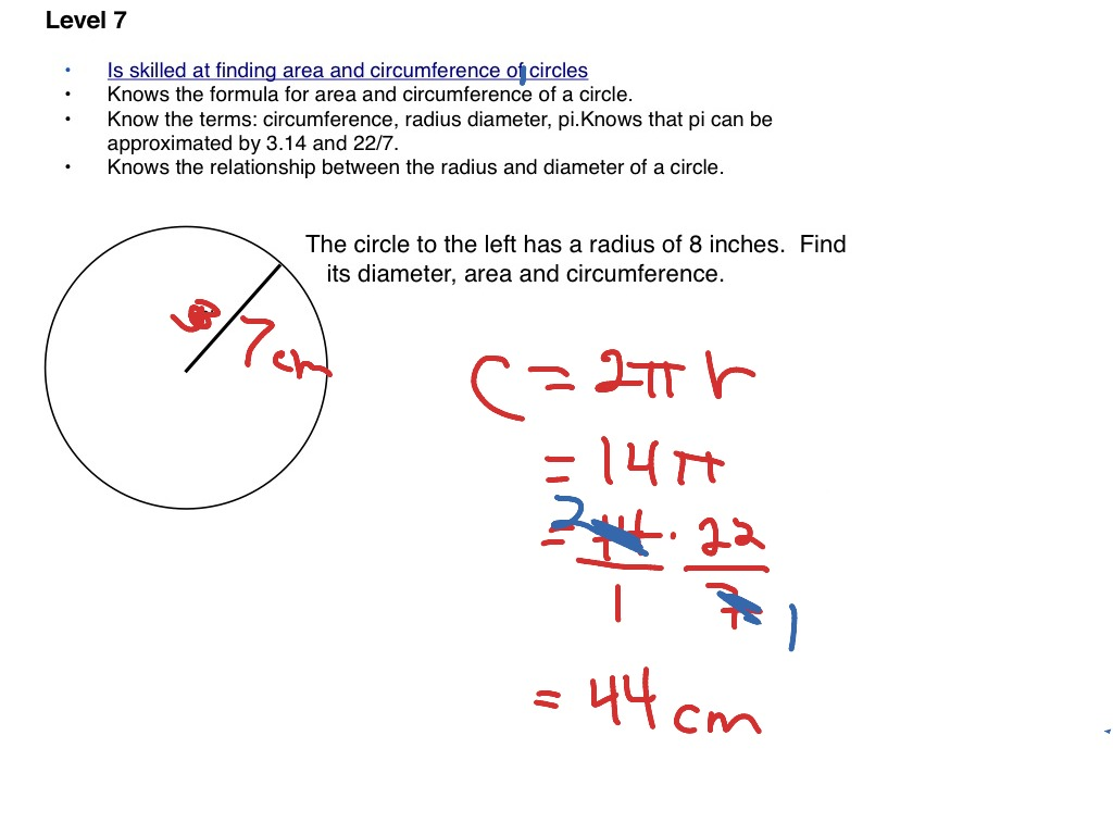 Area Diameter And Circumference Of Circles