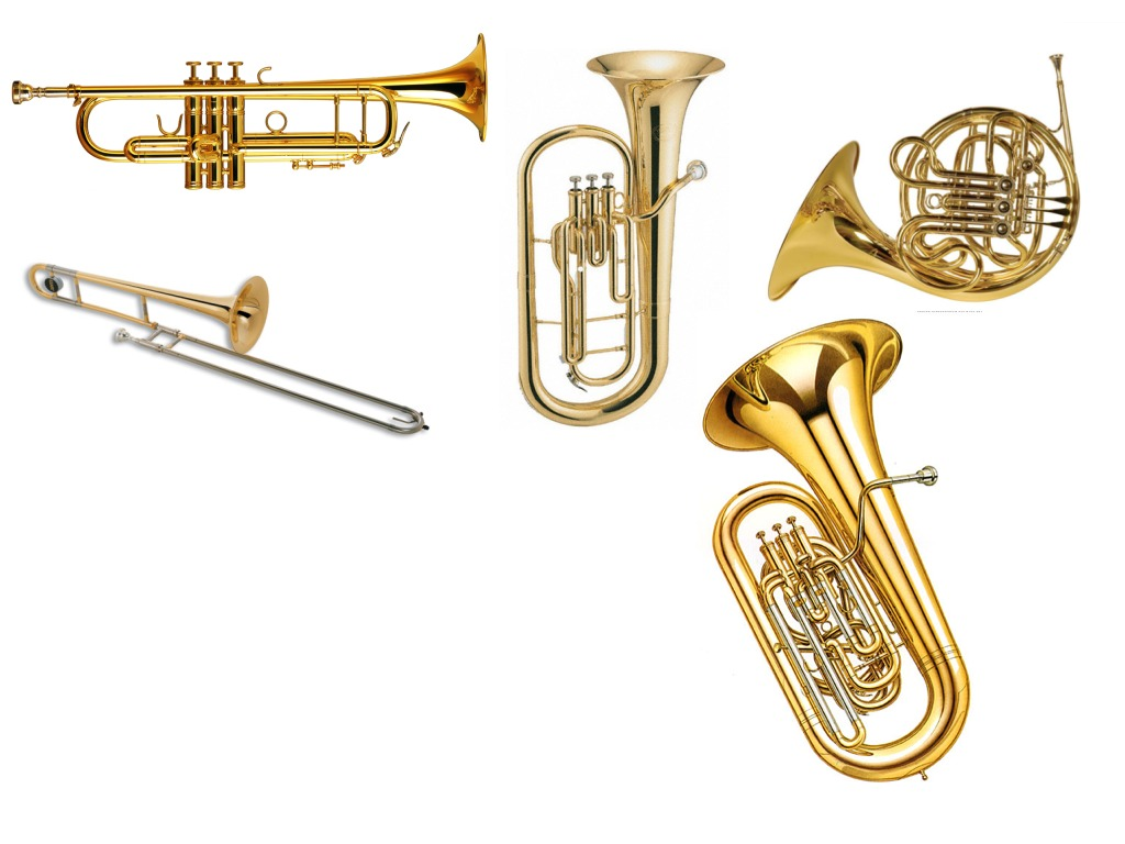 Brass instruments  Music  ShowMe