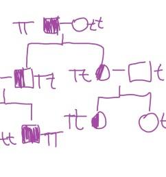 pedigree chart explanation [ 1024 x 768 Pixel ]