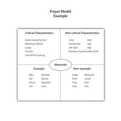 Frayer Model Diagram Jayco Rv Wiring