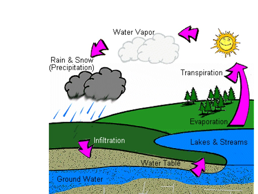 water cycle diagram with questions switch and electrical outlet wiring science weather showme