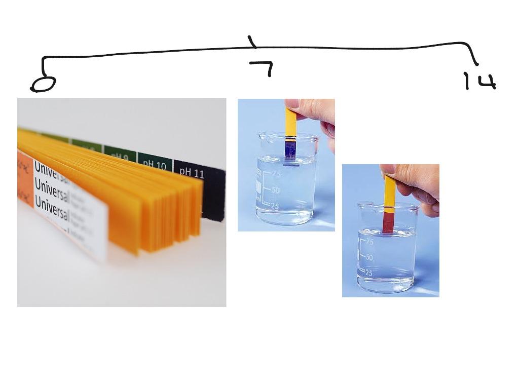 Lesson 3 Ph Scale