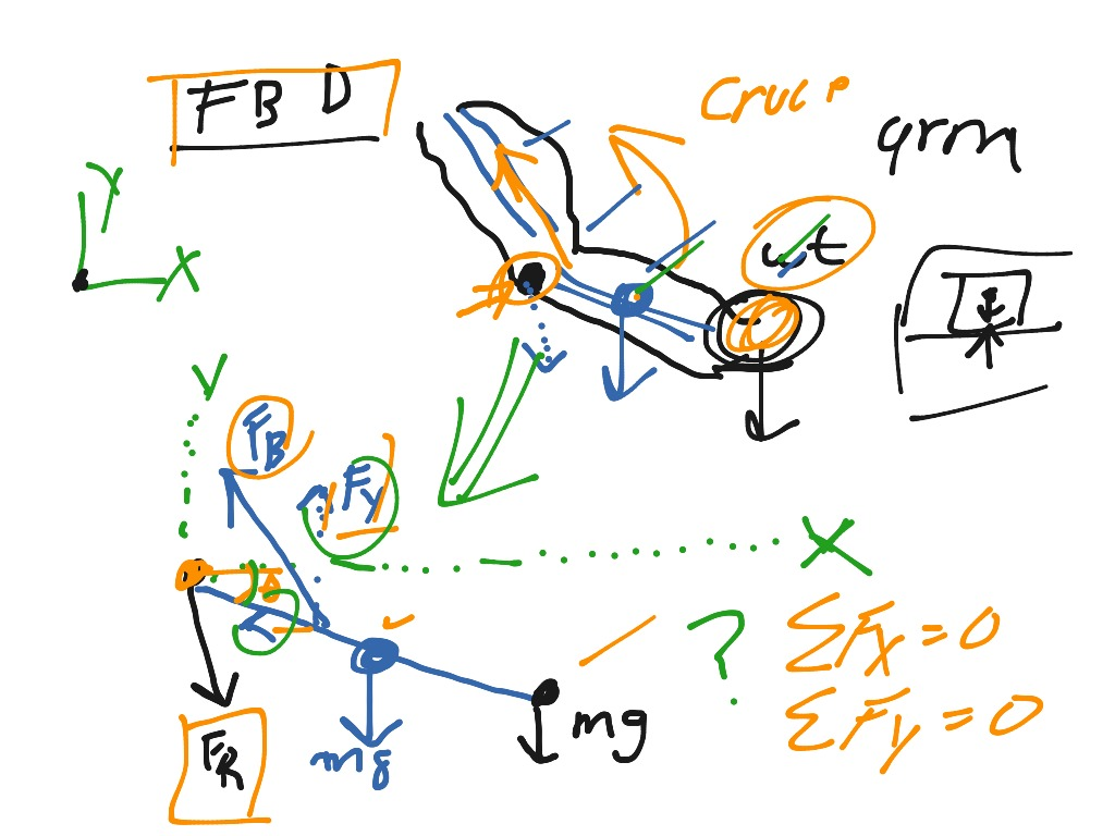 How To Draw A Free Body Diagram