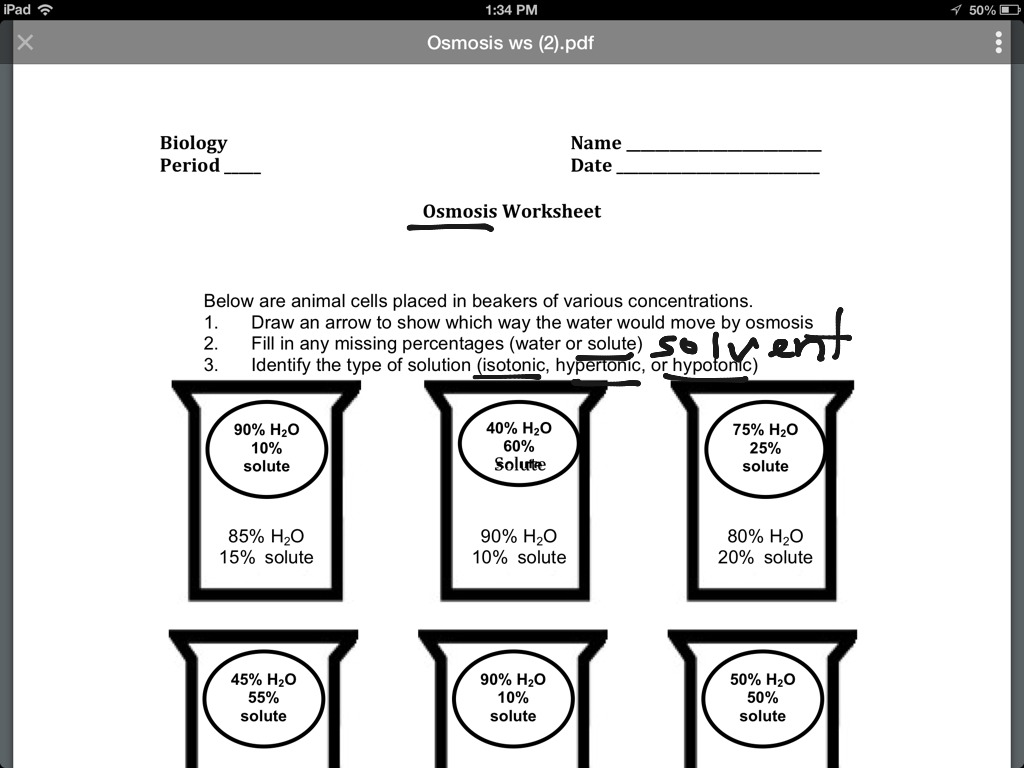 Osmosis Homework