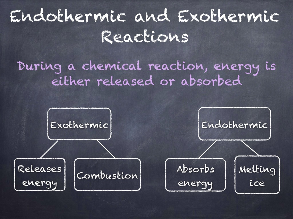7 3 Endothermic And Exothermic Reactions