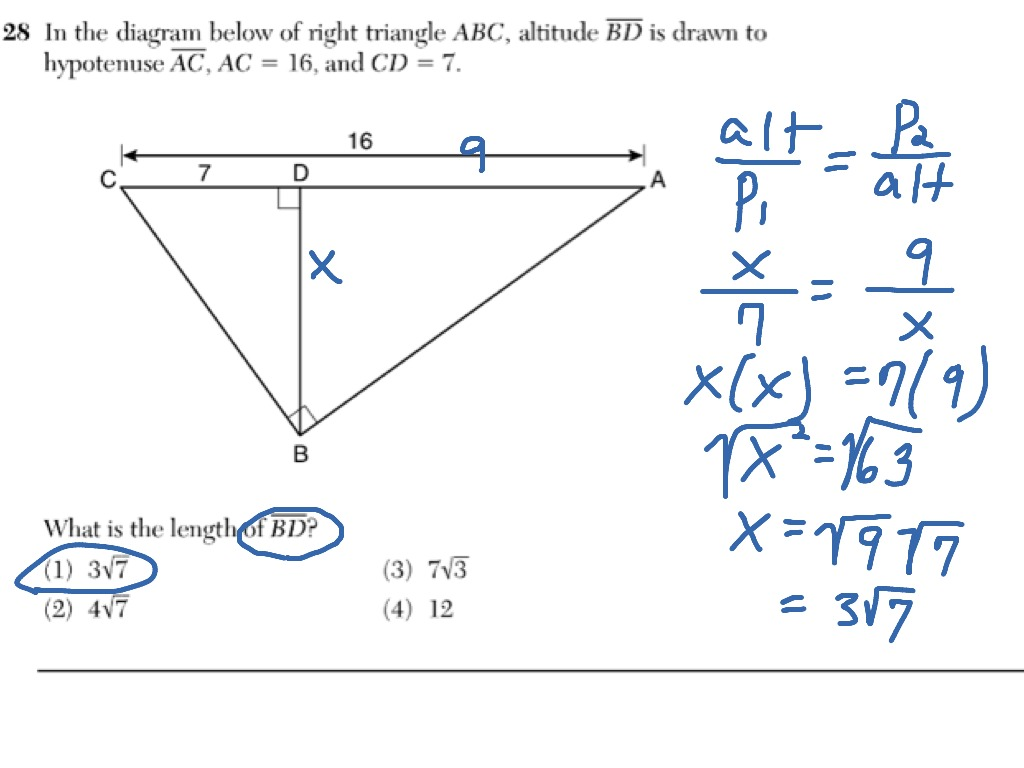 Right Triangle Proportion