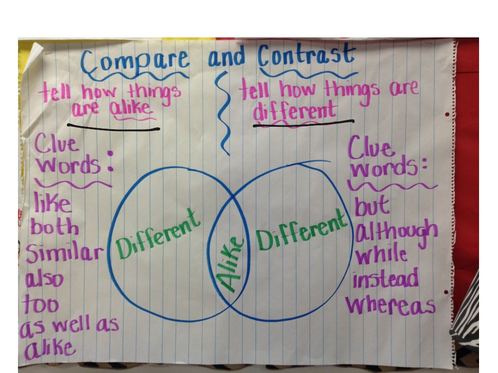 hight resolution of Compare and contrast   Reading Comprehension   ShowMe
