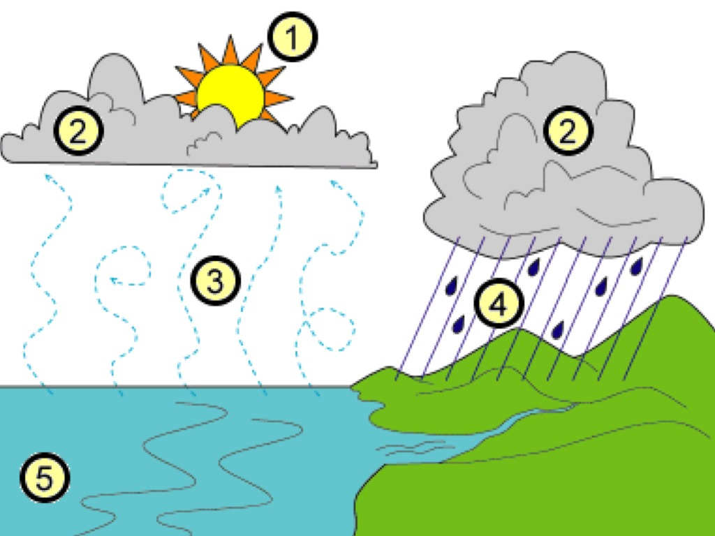 hight resolution of alessandro explains the water cycle environment water cycle ocean floor diagram water cycle diagram numbers