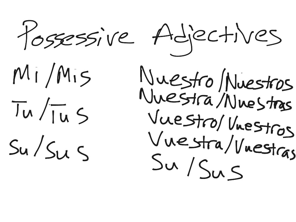 Possessive Adjectives In Spanish