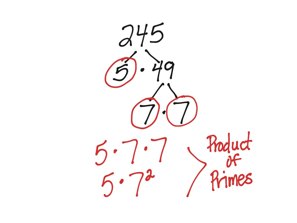 Prime Factorization Lesson