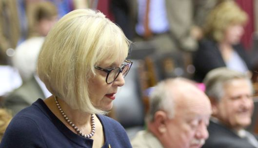 Representative Stacey Newman (D) on the floor of the Missouri House [2014 file photo].