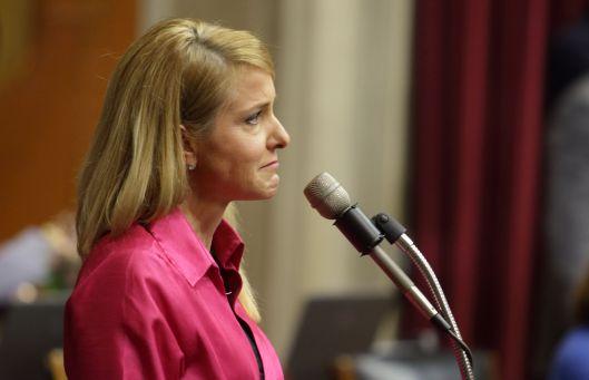 Representative Tracy McCreery (D) - May 13, 2016.