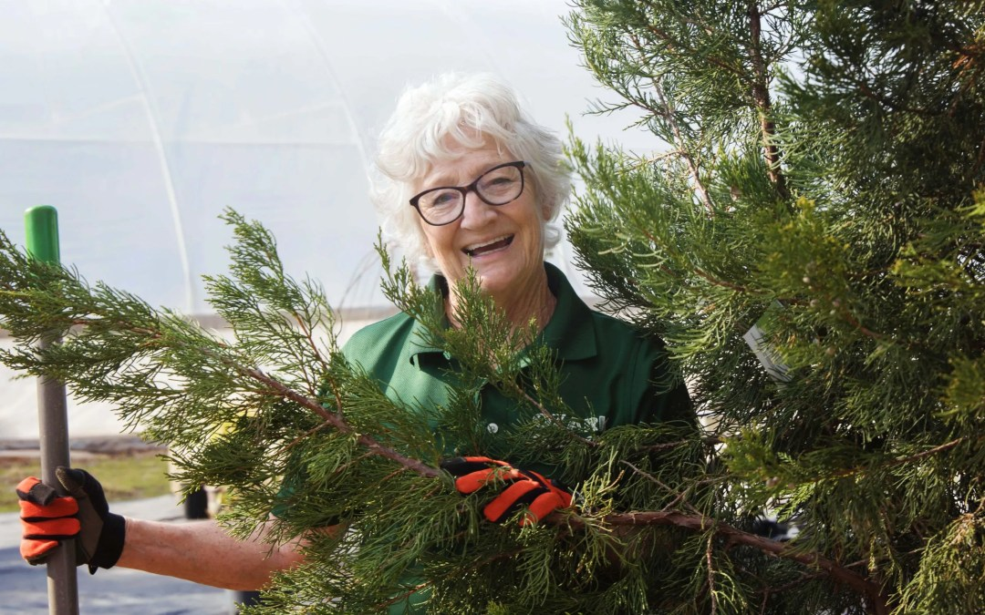 How to Plant a tree on Arbor Day  (or any other day!)