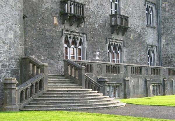 Kilkenny Castle Steps