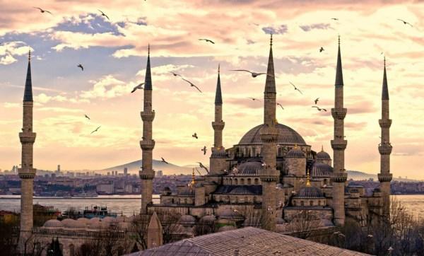 Sultanahmet Camii birds