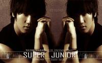 "Super Junior ""No Other"" Yesung"