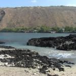 Adventures in Kealakekua Bay