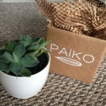 Latest Obsession: Paiko Hawaii