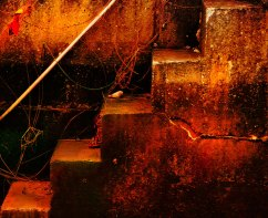 steps1web