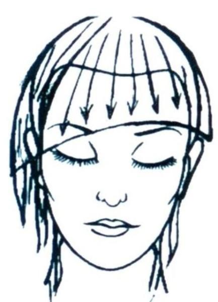 Iniziamo un arco dal punto più alto dell'orecchio, finire il centro dell'orecchio o l'urina