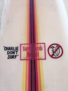 Surfboards Hawaii Mike Slingerland Single Fin 7'94