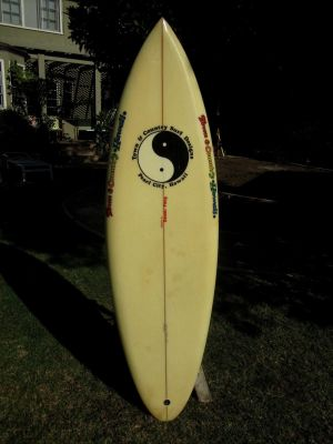 T&C Dennis Pang Single Fin 5'9 13