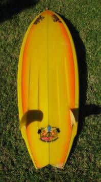 Hobie Terry Martin Twin Fin 4