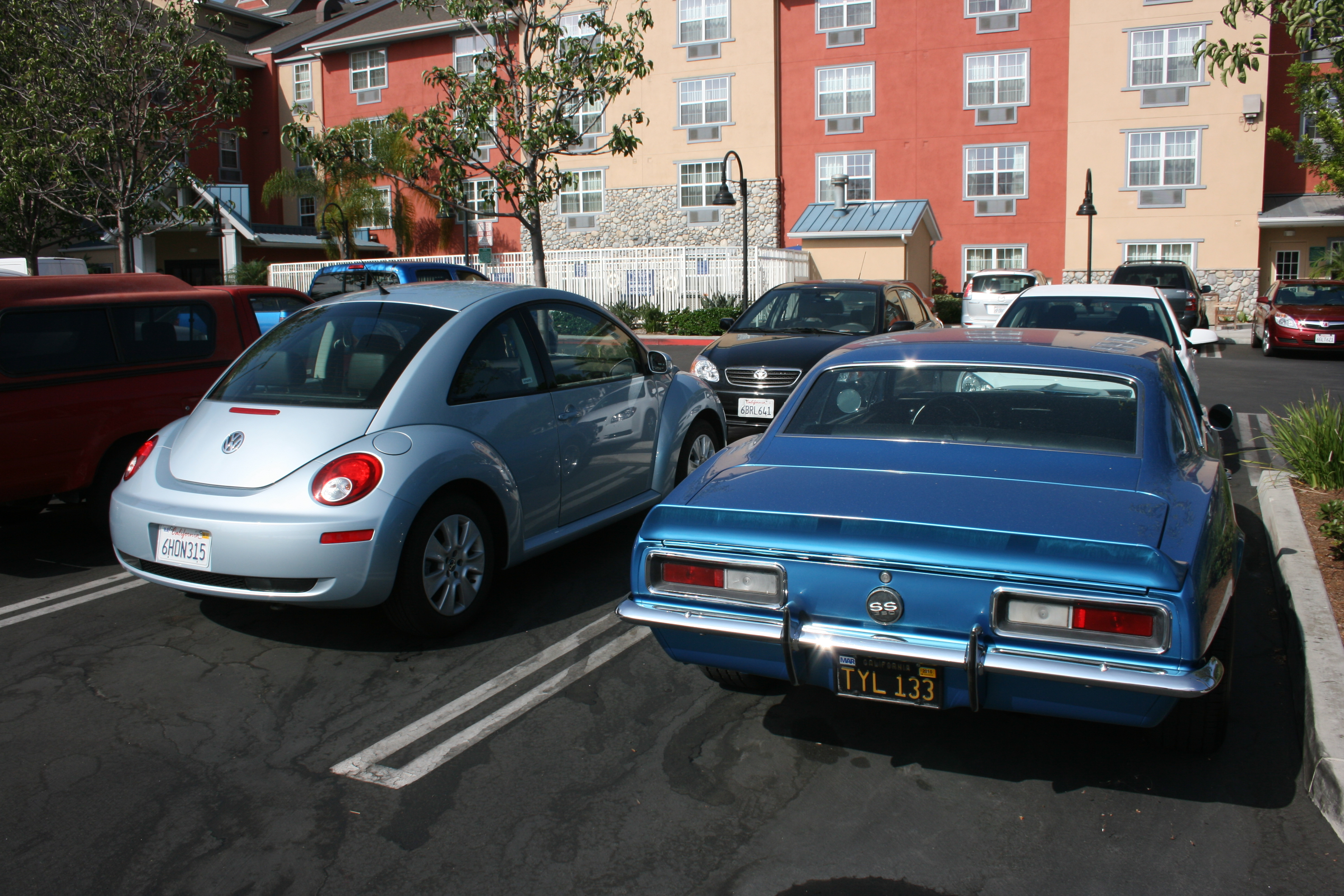 VW Beetle, thanks Alamo.