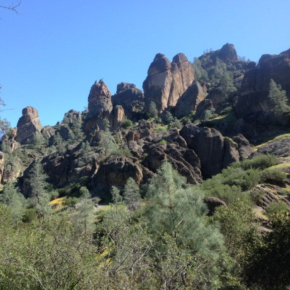 Pinnacles 6