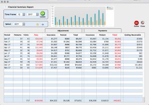 Mental health practice financial summary