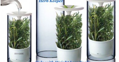 Fresh Herb Keeper - Lose Weight