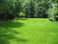 garden-lawn-design  Shri Shani Dev Green Nursery