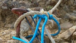 Ropes are set on metal sticks hammered into the soil…