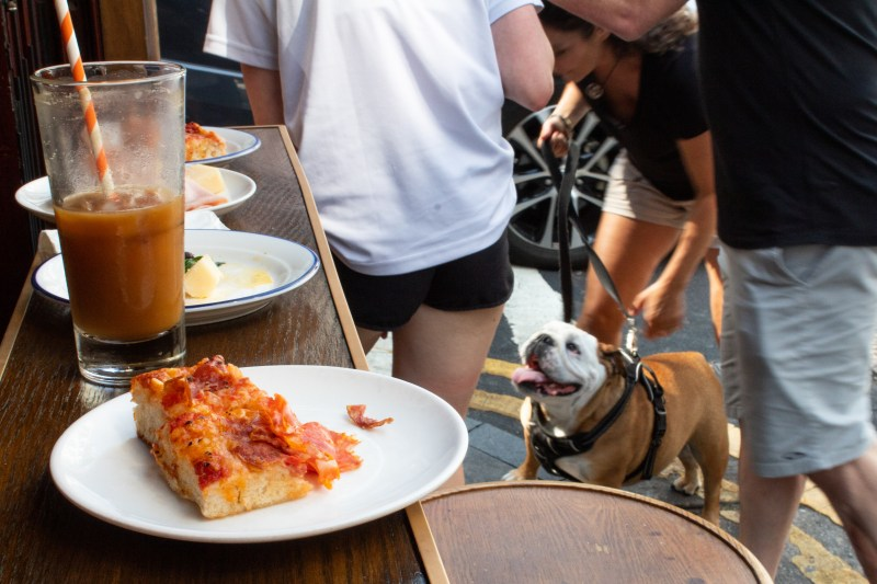Doggy Halloween-food & Dog
