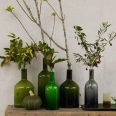 green bottle and plant cuttings