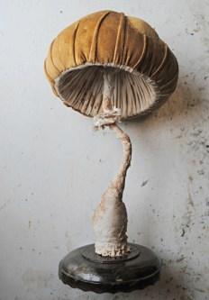 orange-mushroom-small