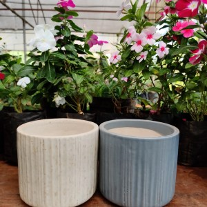 Cylindrical Mini Planter