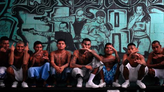 gangs1