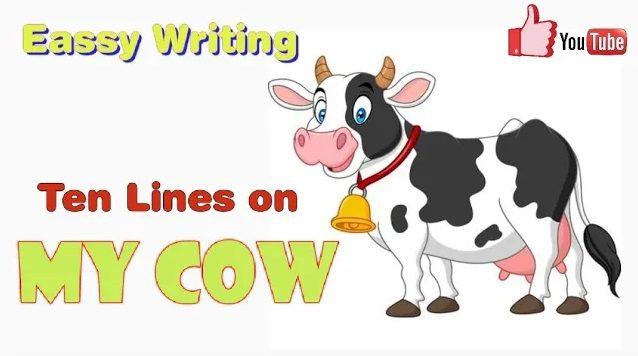 My favourite pet animals Cow