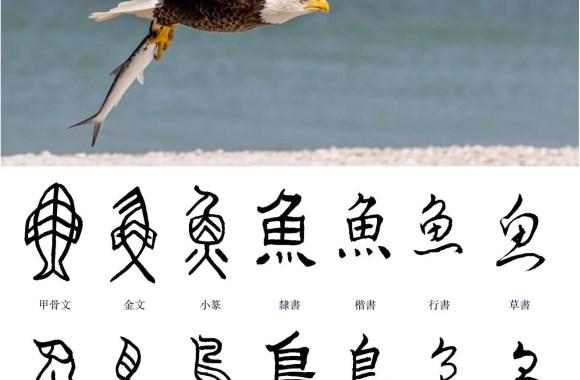 Best Chinese Calligraphy Generators Online - Shufa Life