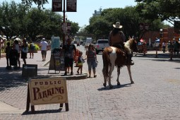 I'm not sure if the public parking included horses or not. / Photo by Parker Conley
