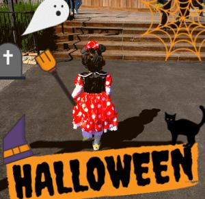 ハロウィン 女の子 仮装 可愛い コスプレ