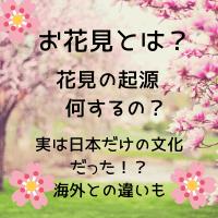 お花見とは 花見の起源